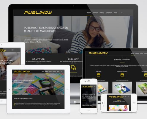 Diseño de Páginas Web en Madrid